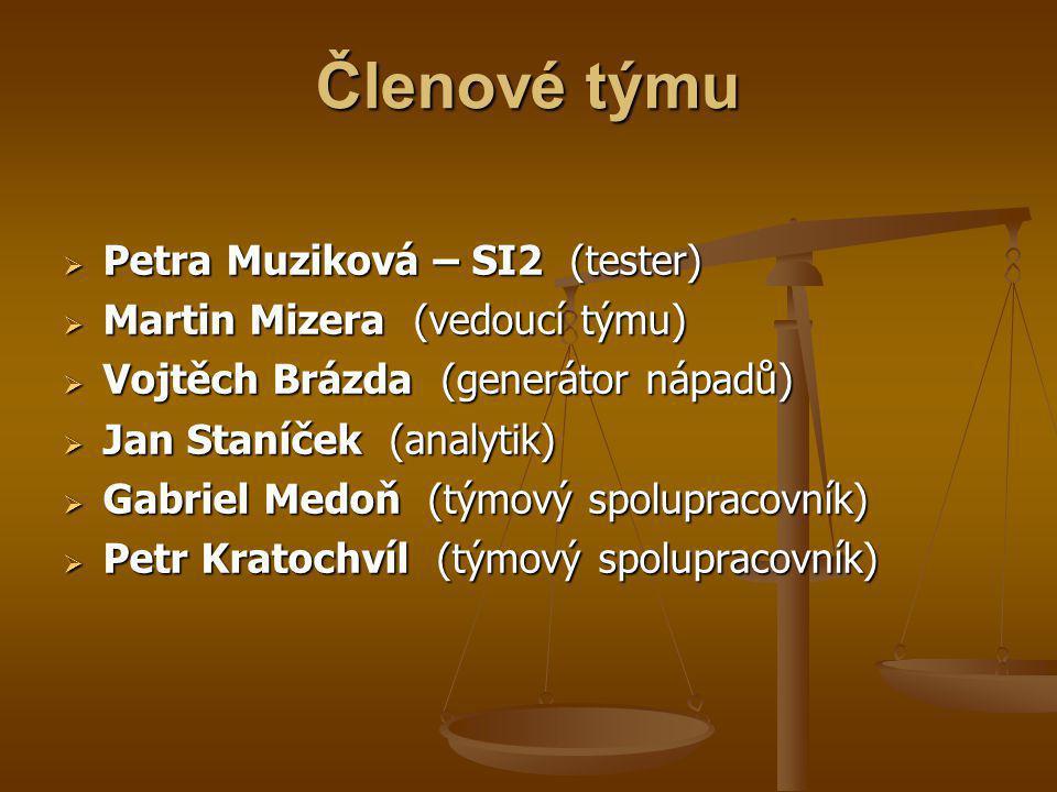 Členové týmu  Petra Muziková – SI2 (tester)  Martin Mizera (vedoucí týmu)  Vojtěch Brázda (generátor nápadů)  Jan Staníček (analytik)  Gabriel Me