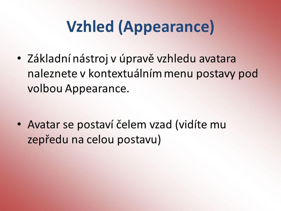 Vzhled (Appearance) Základní nástroj v úpravě vzhledu avatara naleznete v kontextuálním menu postavy pod volbou Appearance.
