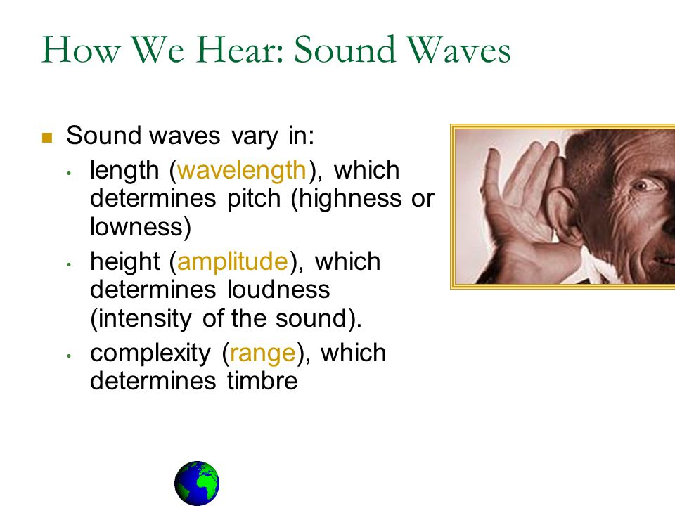 How We Hear: Sound Waves Sound waves vary in: length (wavelength), which determines pitch (highness or lowness) height (amplitude), which determines loudness (intensity of the sound).