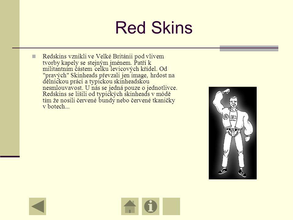 Tradiční Skini Nebyli tak známí v Evropě jako v Británii. Snažili se svojí hudbou a svými časopisy udržet klasický kult Skinheads. O fašistech říkají,