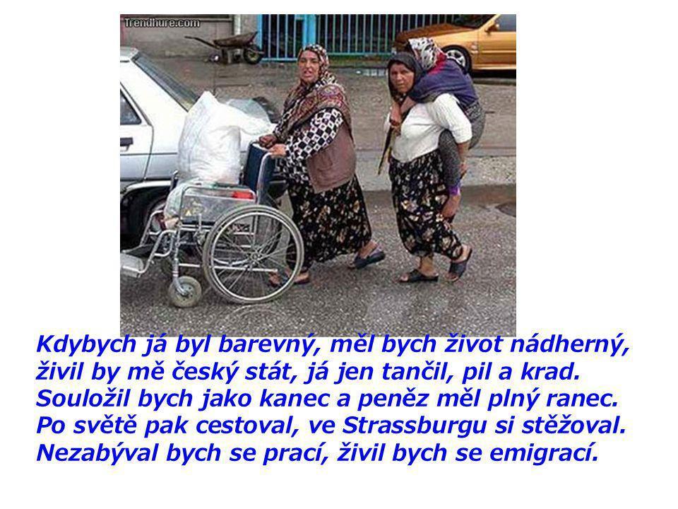 Mě Romové nevadí - mě serou... CESTA EVROPSKÉ CIVILIZACE 2008 CZ Se zvukem,zapni repráky,posuv entrem nebo klepnutím myši