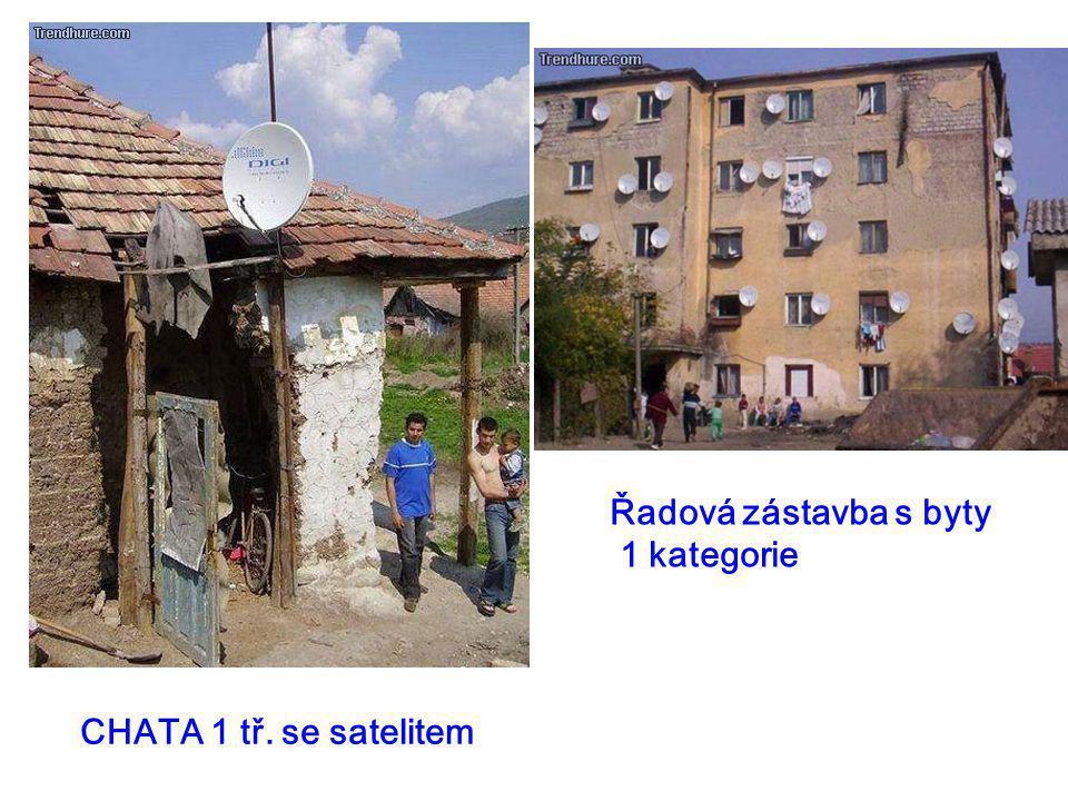 CHATA 1 tř. se satelitem Řadová zástavba s byty 1 kategorie