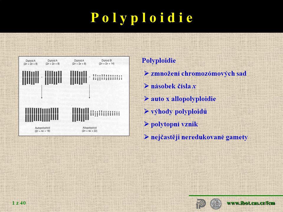 www.ibot.cas.cz/fcm 1 z 40 P o l y p l o i d i e  zmnožení chromozómových sad  násobek čísla x  auto x allopolyploidie  výhody polyploidů  polytopní vznik  nejčastěji neredukované gamety
