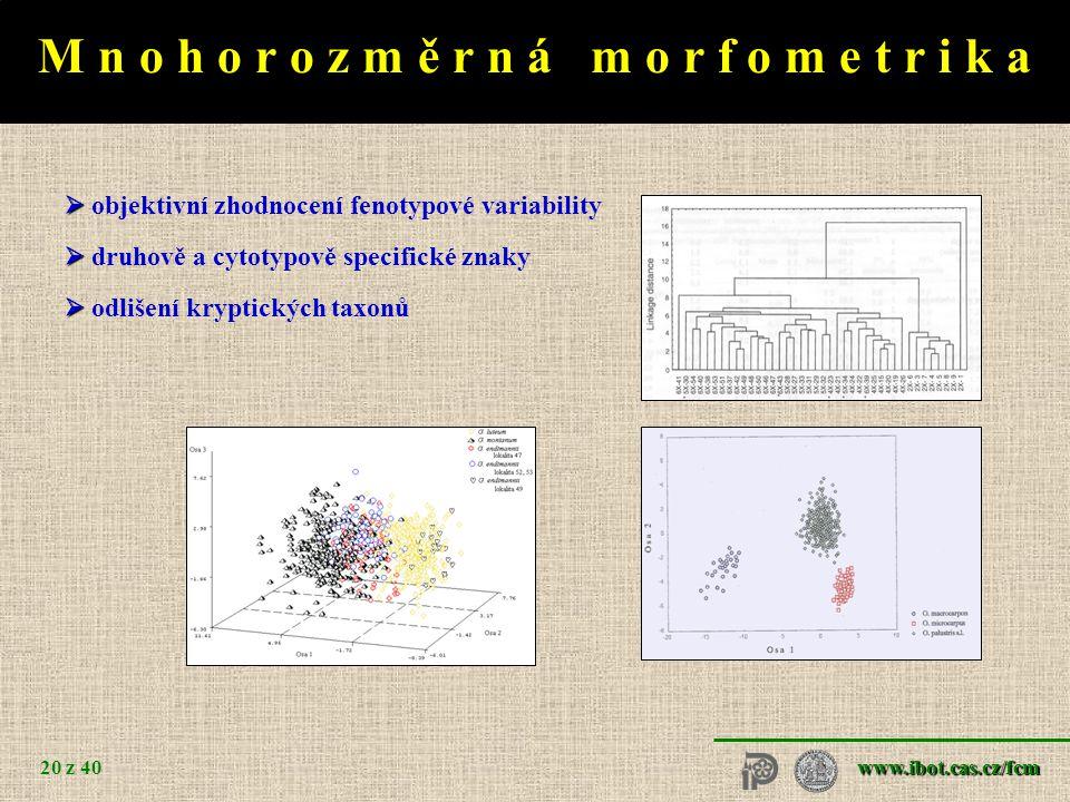 www.ibot.cas.cz/fcm 20 z 40 M n o h o r o z m ě r n á m o r f o m e t r i k a   objektivní zhodnocení fenotypové variability   druhově a cytotypově specifické znaky   odlišení kryptických taxonů