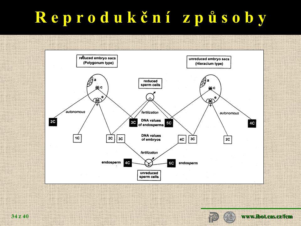 www.ibot.cas.cz/fcm 34 z 40 R e p r o d u k č n í z p ů s o b y