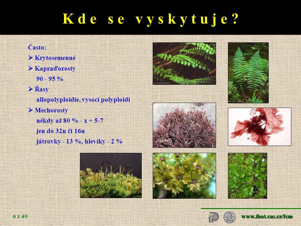 www.ibot.cas.cz/fcm 6 z 40 K d e s e v y s k y t u j e .