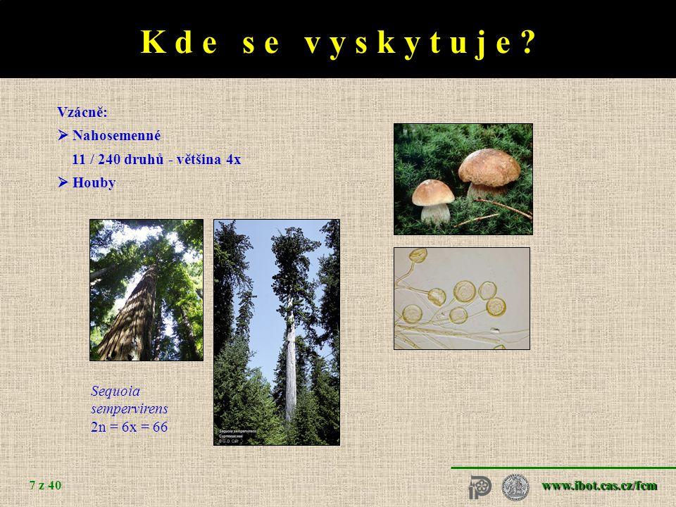 www.ibot.cas.cz/fcm 7 z 40 K d e s e v y s k y t u j e .