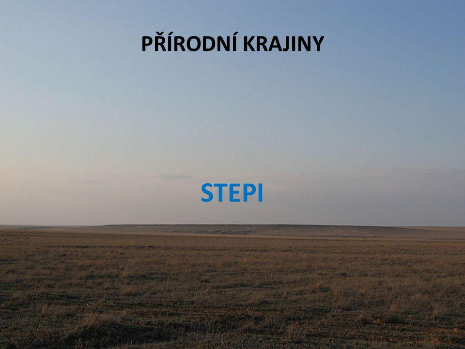 PŘÍRODNÍ KRAJINY STEPI