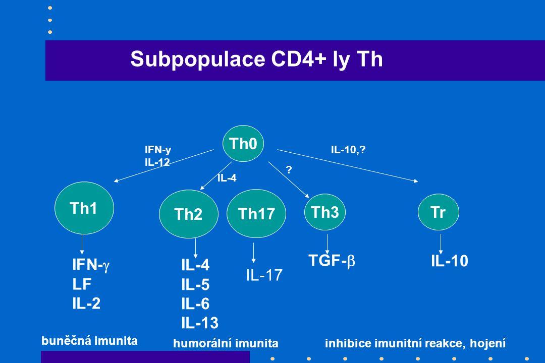 Th0 Th3 Th1 Th2 Tr IFN-  LF IL-2 IL-4 IL-5 IL-6 IL-13 TGF-  IL-10 IFN-y IL-12 IL-4 IL-10,.