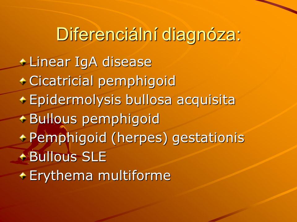 Diferenciální diagnóza: Linear IgA disease Cicatricial pemphigoid Epidermolysis bullosa acquisita Bullous pemphigoid Pemphigoid (herpes) gestationis B