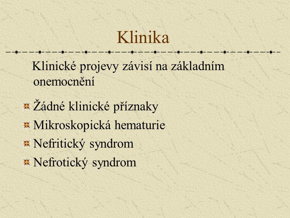 Klinika Klinické projevy závisí na základním onemocnění Žádné klinické příznaky Mikroskopická hematurie Nefritický syndrom Nefrotický syndrom