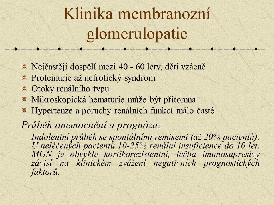 Klinika membranozní glomerulopatie Nejčastěji dospělí mezi 40 - 60 lety, děti vzácně Proteinurie až nefrotický syndrom Otoky renálního typu Mikroskopi