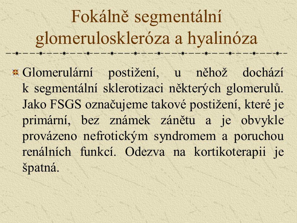 Fokálně segmentální glomeruloskleróza a hyalinóza Glomerulární postižení, u něhož dochází k segmentální sklerotizaci některých glomerulů. Jako FSGS oz