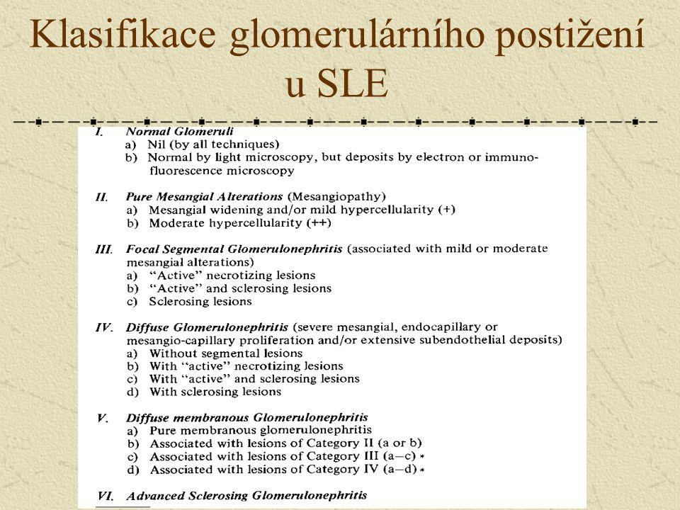 Klasifikace glomerulárního postižení u SLE