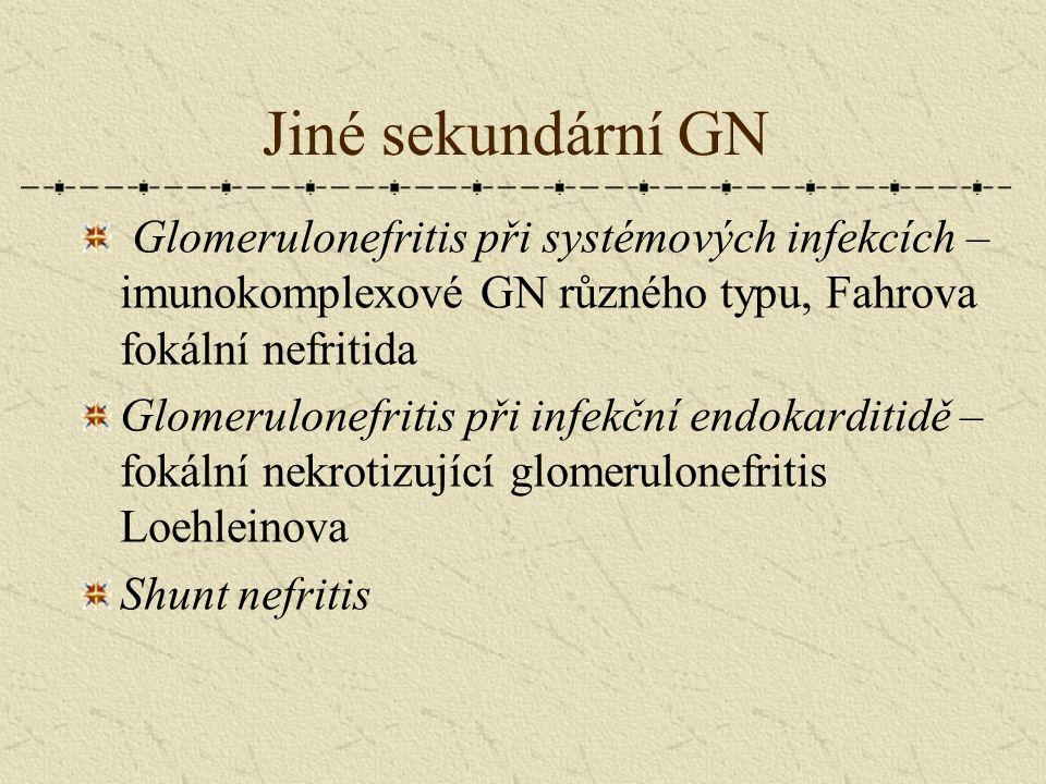 Jiné sekundární GN Glomerulonefritis při systémových infekcích – imunokomplexové GN různého typu, Fahrova fokální nefritida Glomerulonefritis při infe