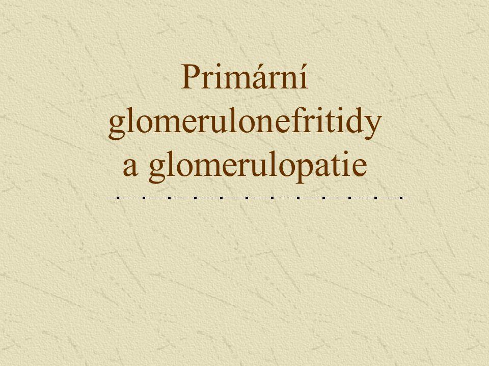 Primární glomerulonefritidy a glomerulopatie