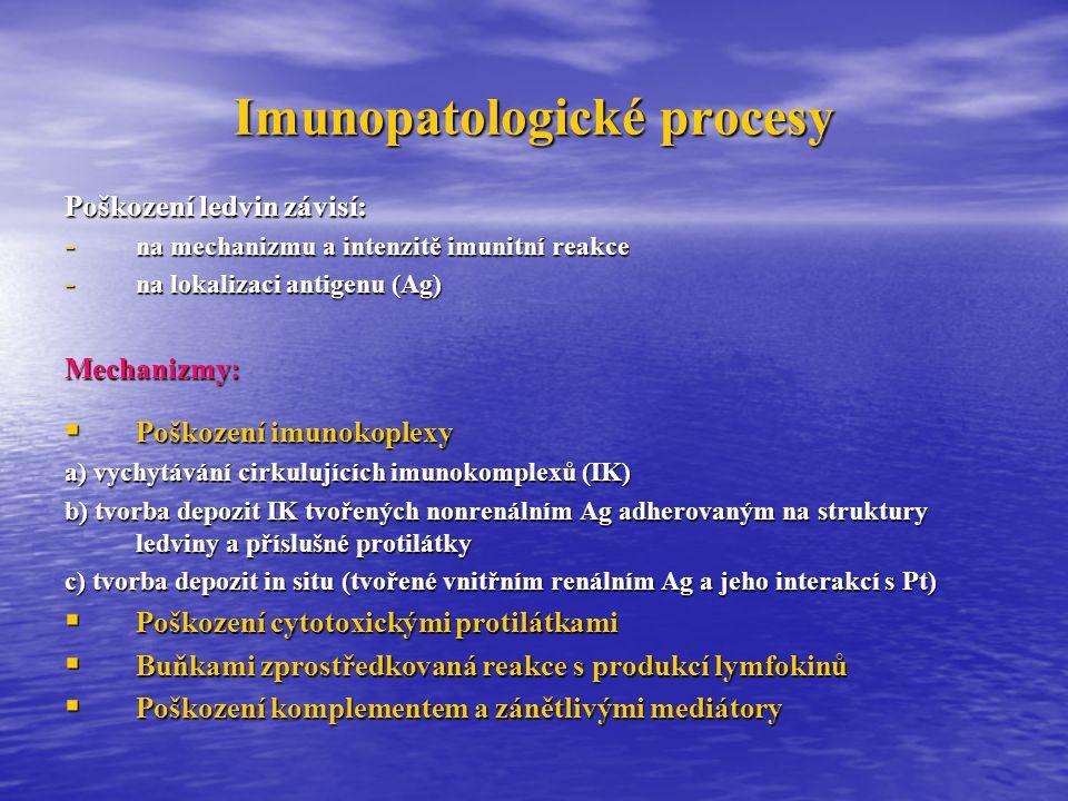 Postinfekční nonstreptokoková glomerulonefritida  Akutní glomerulonefritis se může vyskytnout i při jiných infekcích: - stafylokoky - herpes virus - stafylokoky - herpes virus - pneumokoky - EBV - pneumokoky - EBV - Klebsiella pneumonie - virus hepatitidy apod.