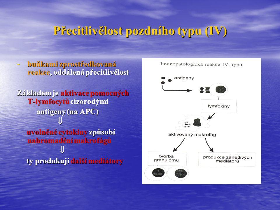 Goodpastuerův sy  Charakterizované přítomností Pt proti bazální membráně glomerulů (alveolokapilární membráně)  Etiologie: kombinace exogenních faktorů (kouření, infekce, toxické látky) a geneticky vnímavého terénu (HLA B7, DR2) a geneticky vnímavého terénu (HLA B7, DR2)  Patogeneze: GBM je tvořena kolagenem IV s navázanými proteiny (lamininem, entaktinem, tenascinem) a proteoglykany (lamininem, entaktinem, tenascinem) a proteoglykany Goodpasterův antigen Goodpasterův antigen (lokalizován do C-terminální nekolagenní (lokalizován do C-terminální nekolagenní globulární domény (NC1) molekuly  3 řetězce kolagenu IV globulární domény (NC1) molekuly  3 řetězce kolagenu IV  tvorba Pt (IgG1 schopné vázat komplement) tvorba Pt (IgG1 schopné vázat komplement)  poškození BM poškození BM  Klinický obraz: GN + hemoptýza + těžká anémie (hypochromní mikrocytární)