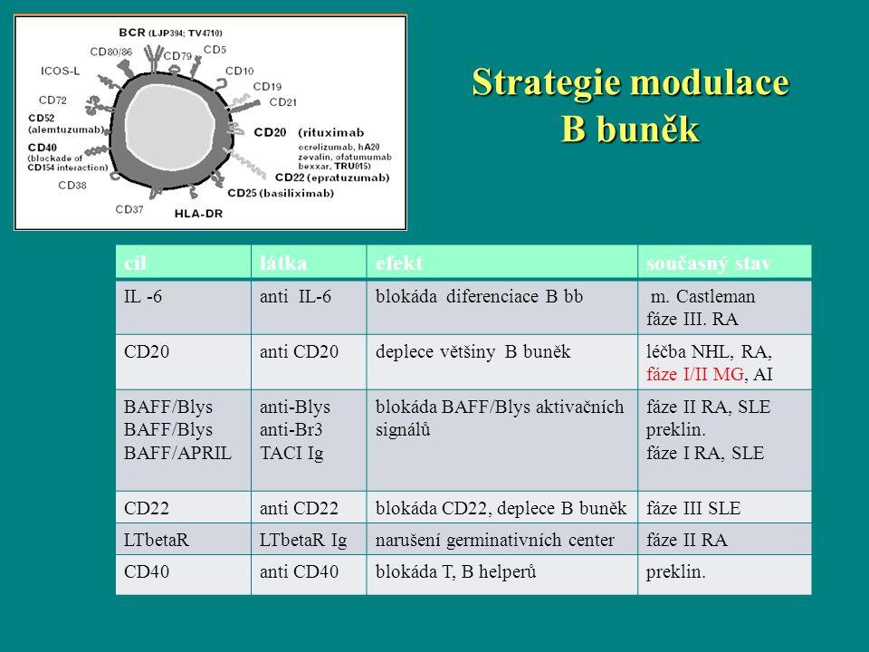 cíllátkaefektsoučasný stav IL -6anti IL-6blokáda diferenciace B bb m. Castleman fáze III. RA CD20anti CD20deplece většiny B buněkléčba NHL, RA, fáze I