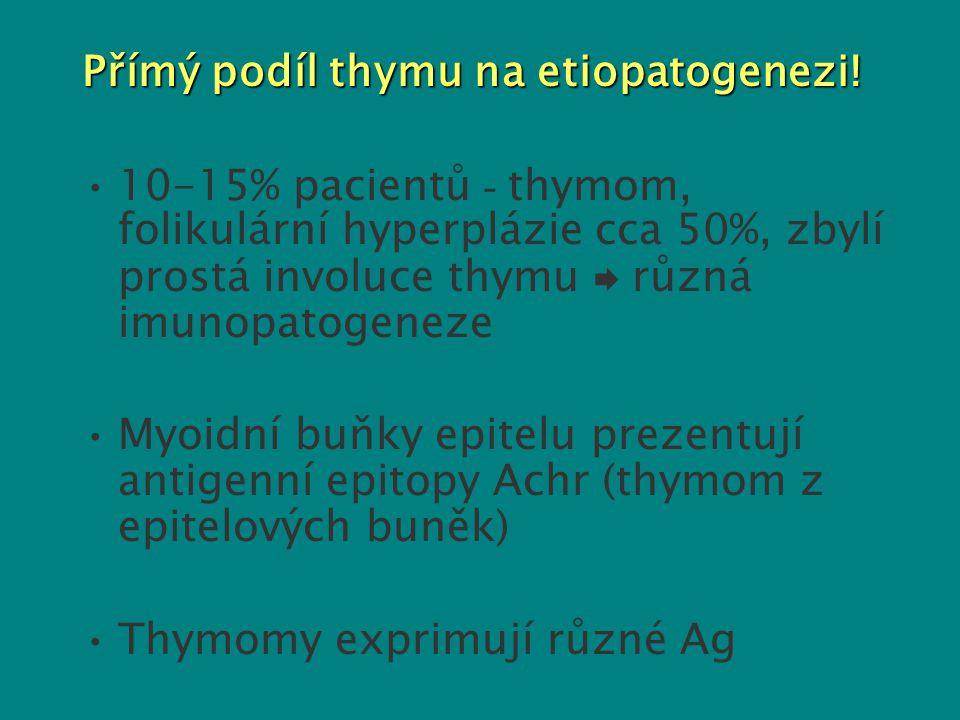 Přímý podíl thymu na etiopatogenezi! 10-15% pacientů - thymom, folikulární hyperplázie cca 50%, zbylí prostá involuce thymu  různá imunopatogeneze My