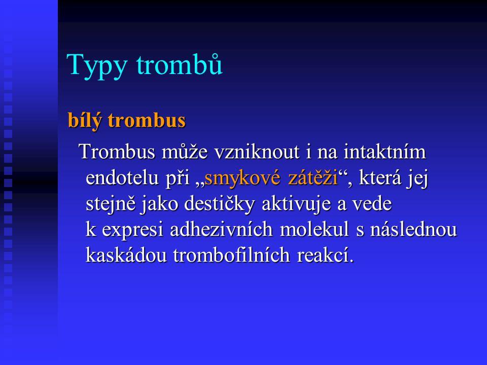 """Typy trombů bílý trombus Trombus může vzniknout i na intaktním endotelu při """"smykové zátěži"""", která jej stejně jako destičky aktivuje a vede k expresi"""