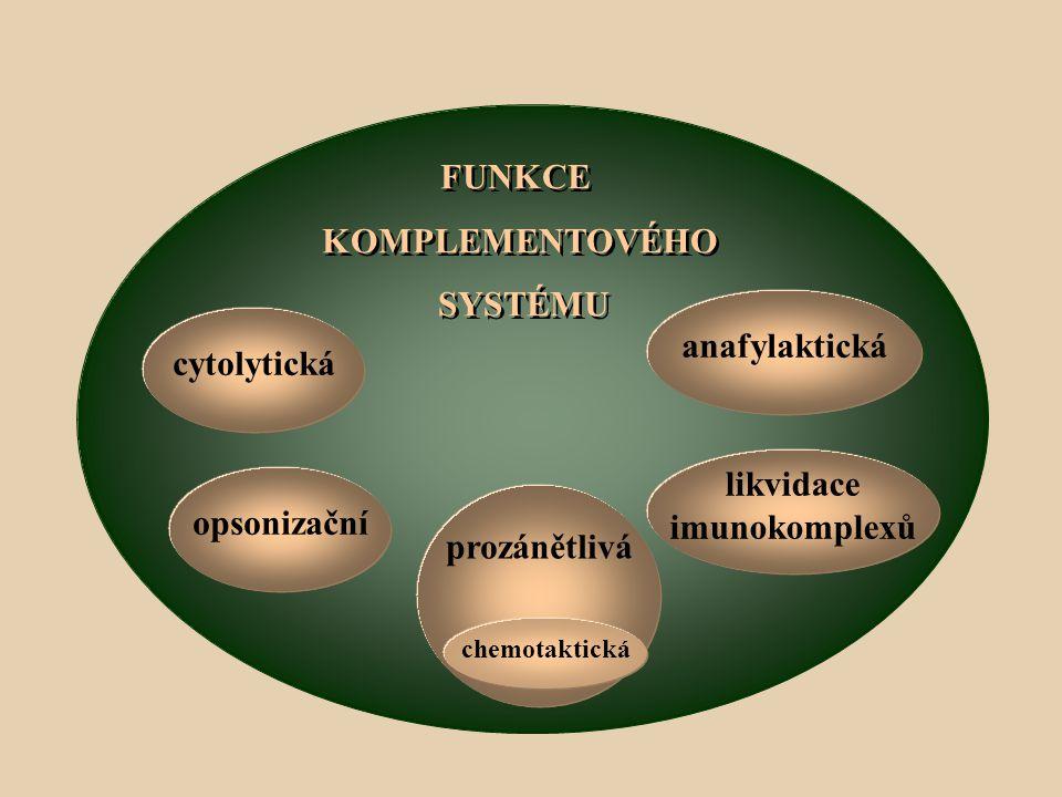 FUNKCE KOMPLEMENTOVÉHO SYSTÉMU FUNKCE KOMPLEMENTOVÉHO SYSTÉMU cytolytická opsonizační prozánětlivá chemotaktická likvidace imunokomplexů anafylaktická