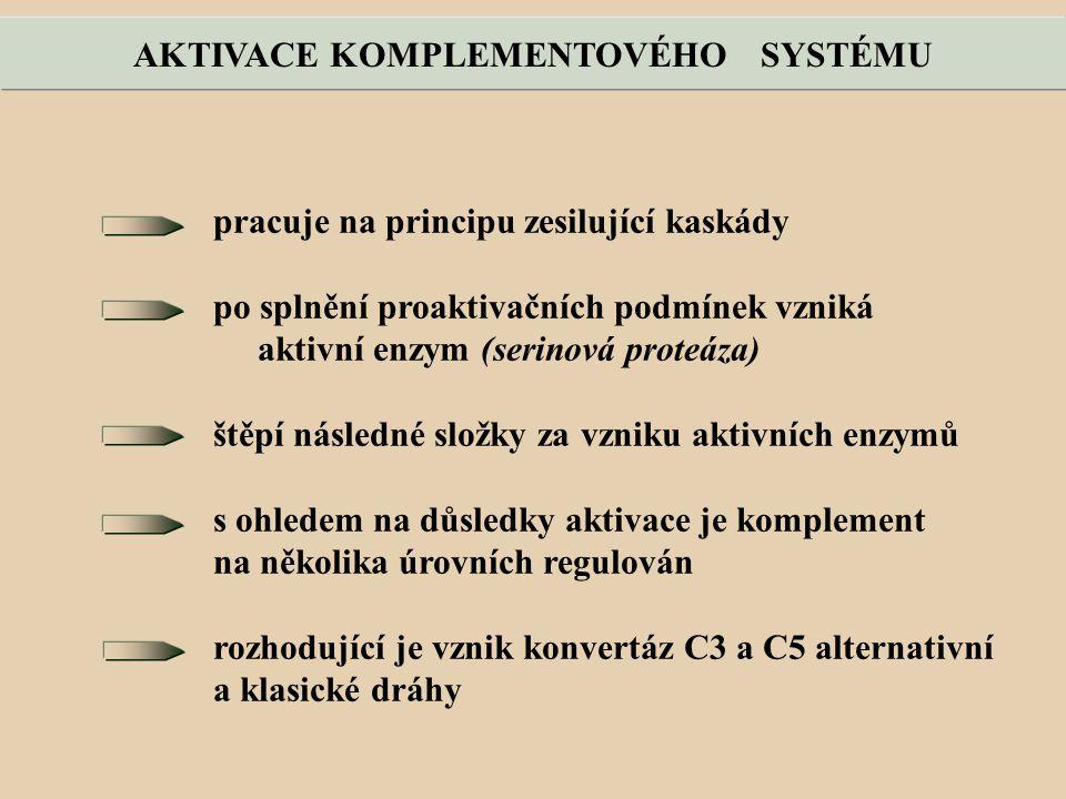 pracuje na principu zesilující kaskády po splnění proaktivačních podmínek vzniká aktivní enzym (serinová proteáza) štěpí následné složky za vzniku aktivních enzymů s ohledem na důsledky aktivace je komplement na několika úrovních regulován rozhodující je vznik konvertáz C3 a C5 alternativní a klasické dráhy AKTIVACE KOMPLEMENTOVÉHO SYSTÉMU