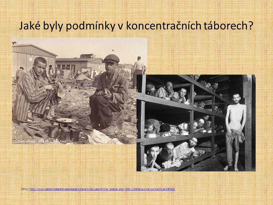 Jaké byly podmínky v koncentračních táborech.