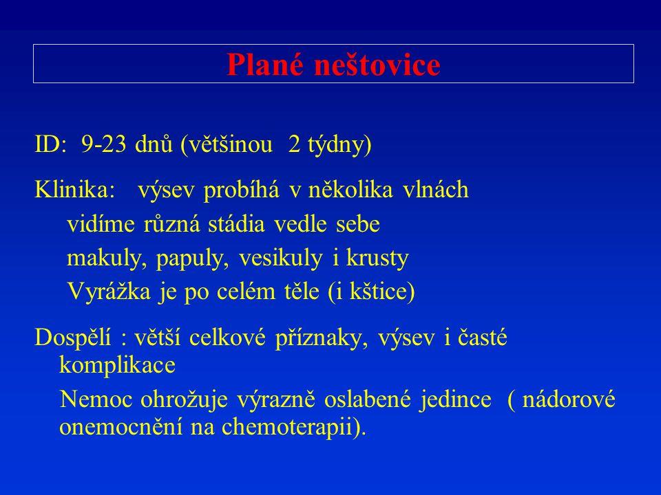 Plané neštovice ID: 9-23 dnů (většinou 2 týdny) Klinika: výsev probíhá v několika vlnách vidíme různá stádia vedle sebe makuly, papuly, vesikuly i kru