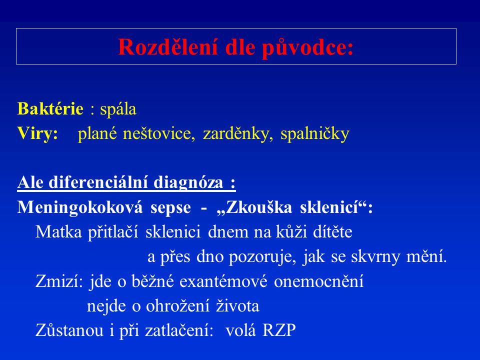 Pásový opar: