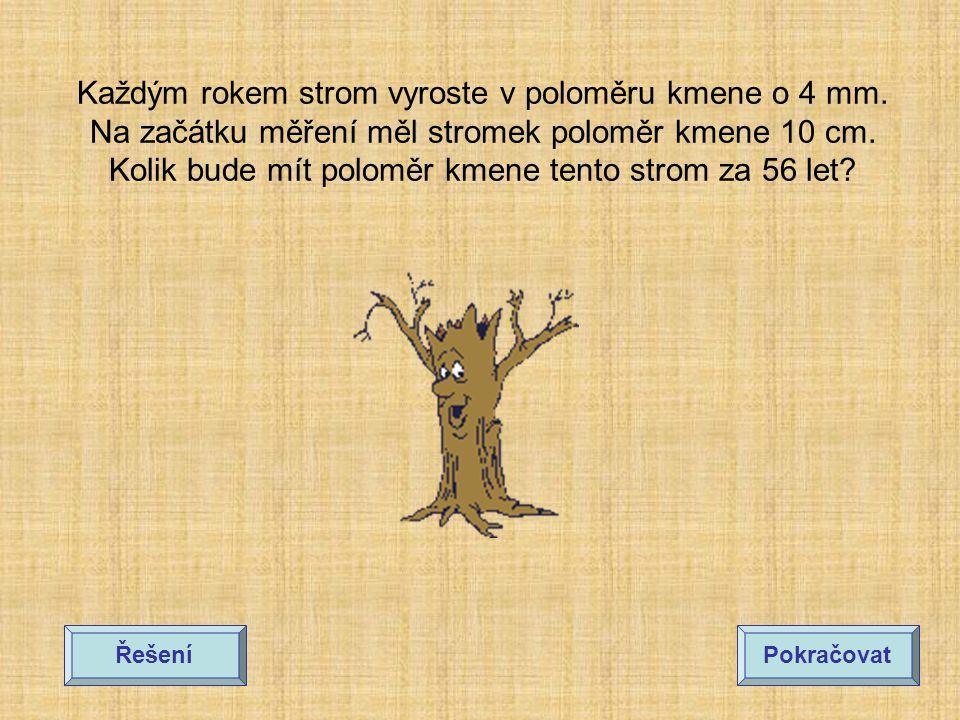 Každým rokem strom vyroste v poloměru kmene o 4 mm.