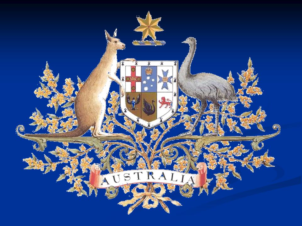 Klokan – symbol Austrálie