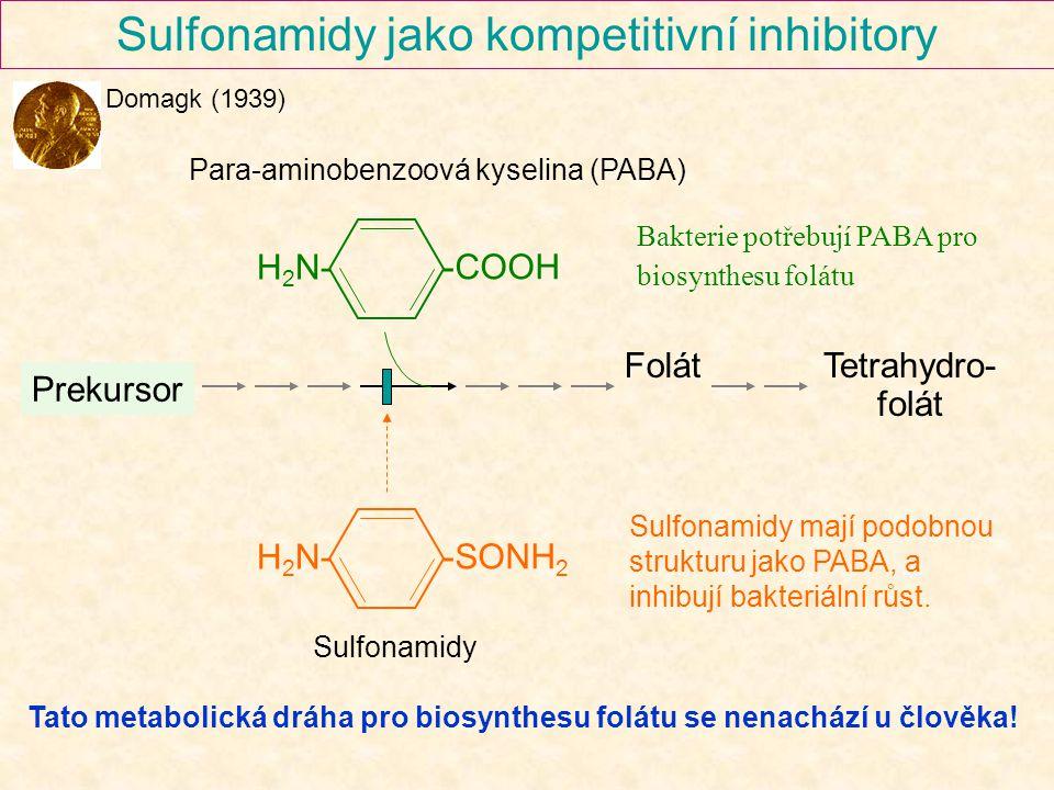 Sulfonamidy jako kompetitivní inhibitory -COOH H 2 N- -SONH 2 H 2 N- Prekursor FolátTetrahydro- folát Sulfonamidy Para-aminobenzoová kyselina (PABA) B