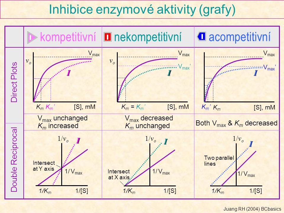 KmKm Inhibice enzymové aktivity (grafy) kompetitivnínekompetitivní acompetitivní Direct Plots Double Reciprocal V max KmKm Km'Km'[S], mM vovo vovo II KmKm V max I Km'Km' V max ' V max unchanged K m increased V max decreased K m unchanged Both V max & K m decreased I 1/[S]1/K m 1/v o 1/ V max I Two parallel lines I Intersect at X axis 1/v o 1/ V max 1/[S]1/K m 1/[S]1/K m 1/ V max 1/v o Intersect at Y axis = Km'= Km' Juang RH (2004) BCbasics