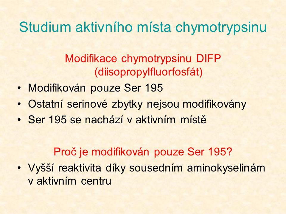Studium aktivního místa chymotrypsinu Modifikace chymotrypsinu DIFP (diisopropylfluorfosfát) Modifikován pouze Ser 195 Ostatní serinové zbytky nejsou