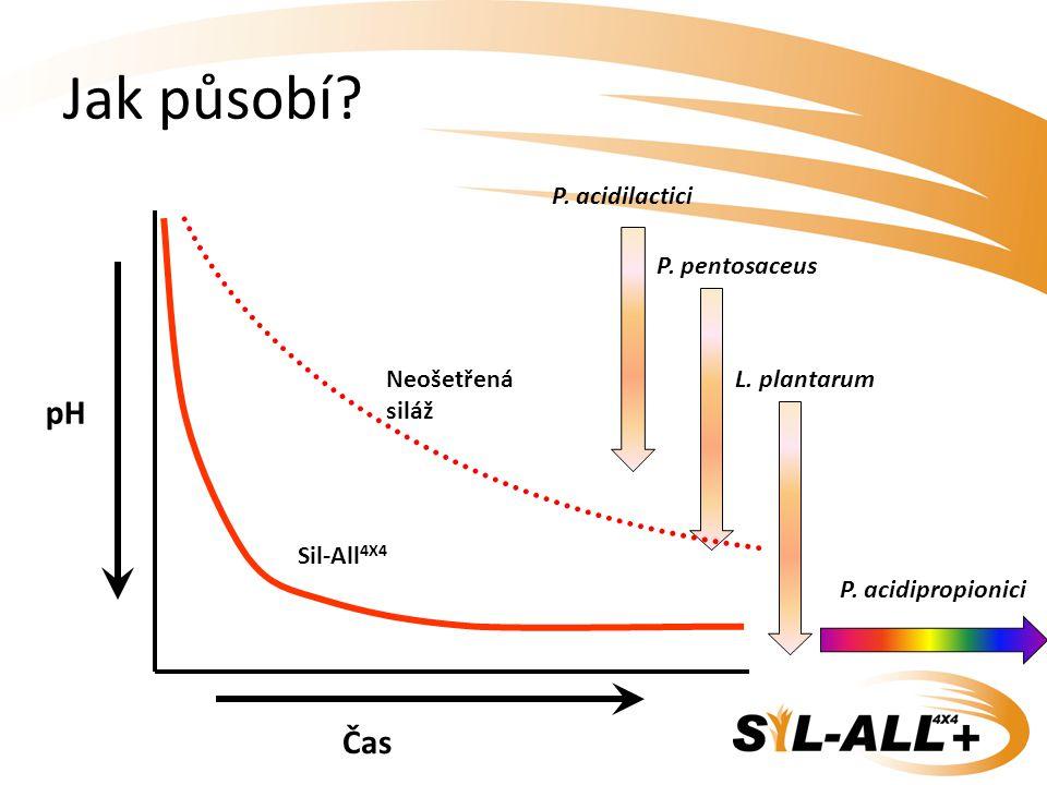 Jak působí? pH Čas Neošetřená siláž Sil-All 4X4 P. acidilactici P. pentosaceus L. plantarum P. acidipropionici