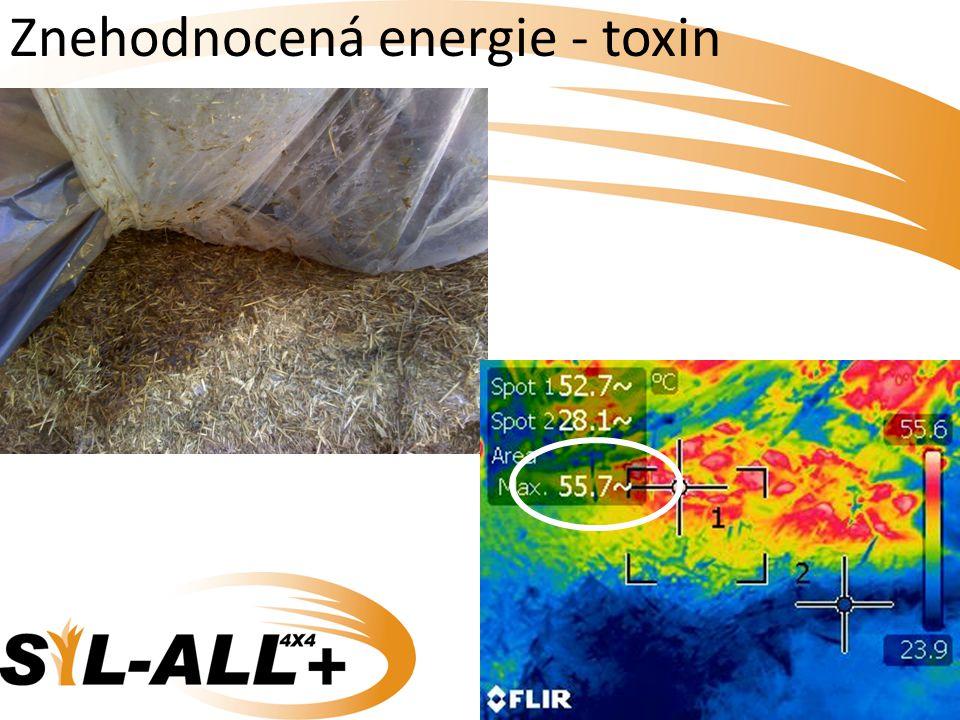 Znehodnocená energie - toxin