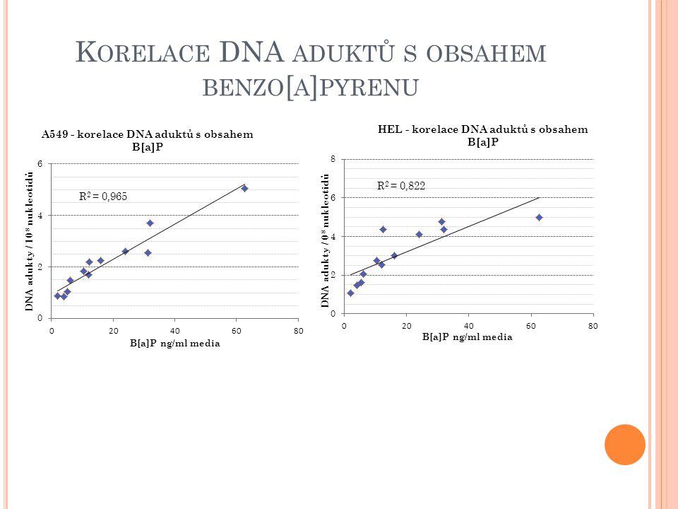 K ORELACE DNA ADUKTŮ S OBSAHEM BENZO [ A ] PYRENU