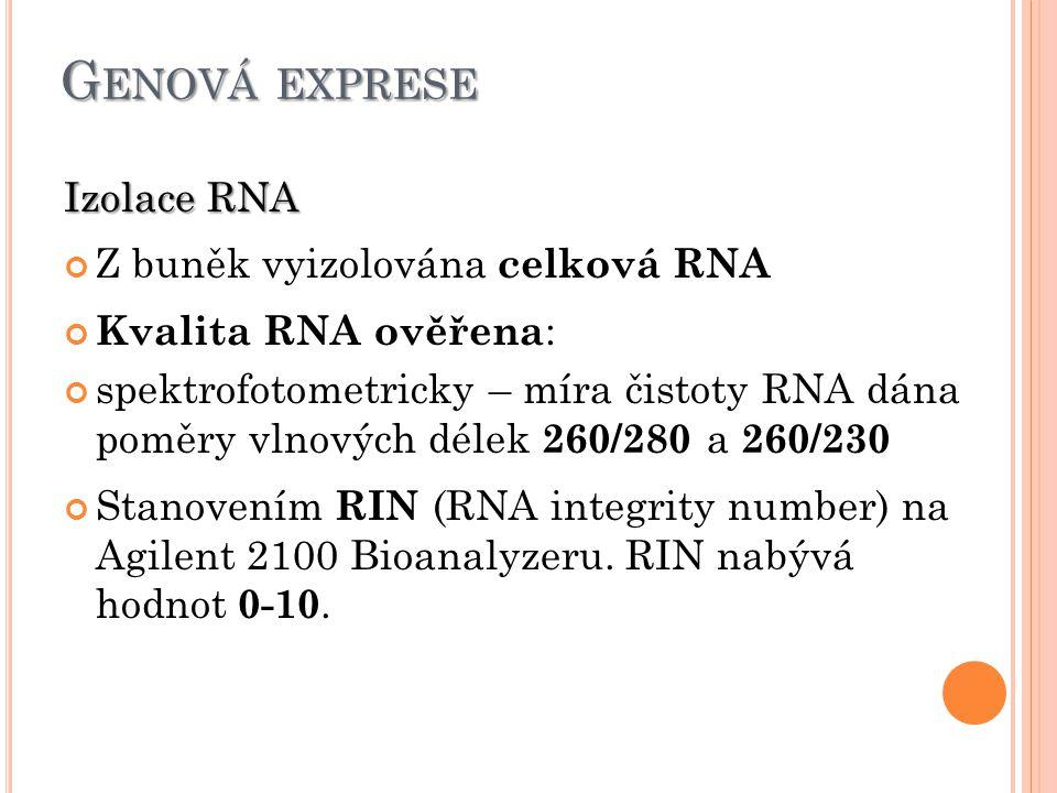 G ENOVÁ EXPRESE Izolace RNA Z buněk vyizolována celková RNA Kvalita RNA ověřena : spektrofotometricky – míra čistoty RNA dána poměry vlnových délek 260/280 a 260/230 Stanovením RIN (RNA integrity number) na Agilent 2100 Bioanalyzeru.