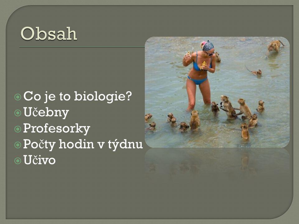  Co je to biologie  U č ebny  Profesorky  Po č ty hodin v týdnu  U č ivo