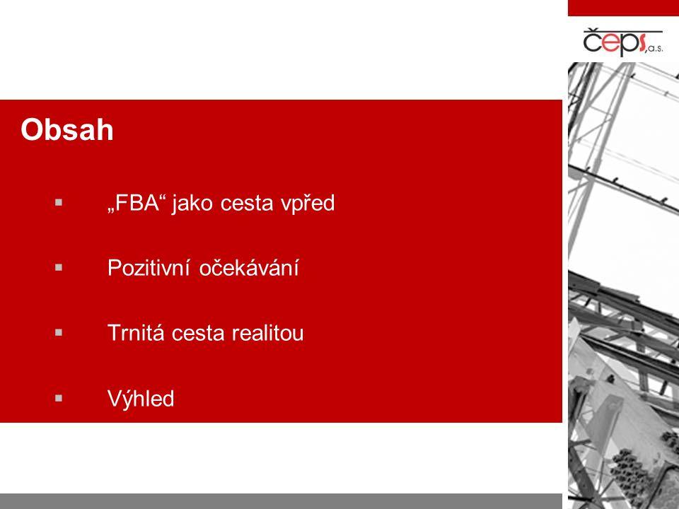 """Obsah  """"FBA"""" jako cesta vpřed  Pozitivní očekávání  Trnitá cesta realitou  Výhled"""