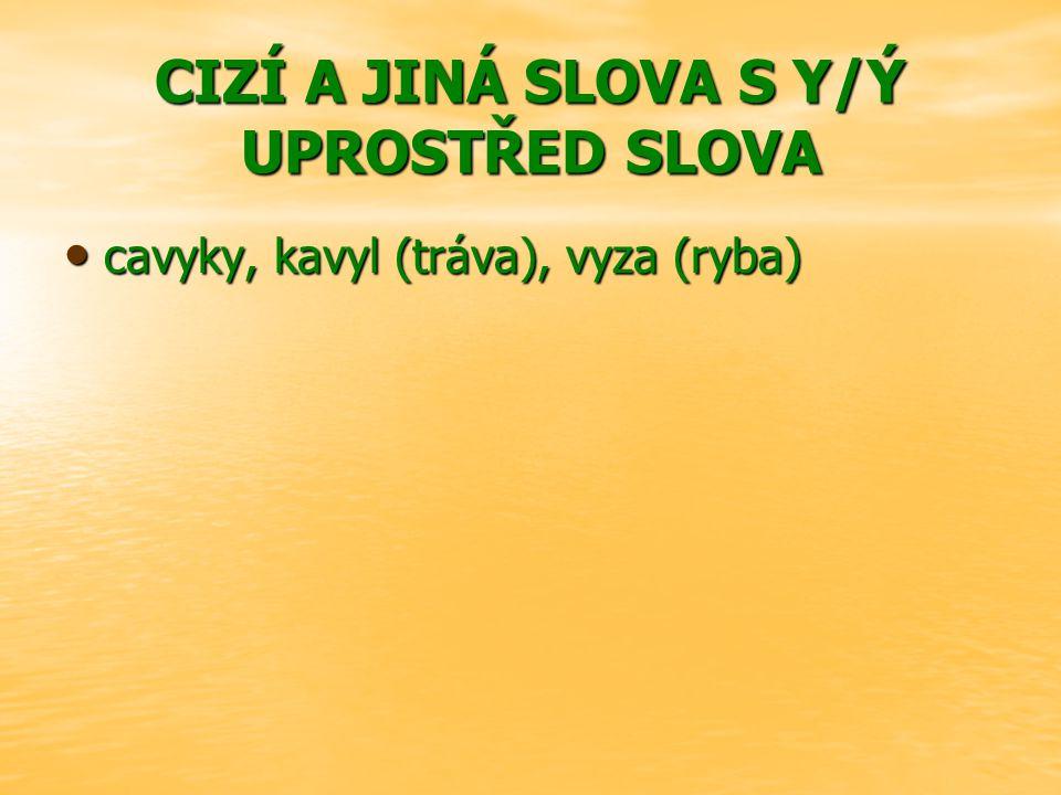 CIZÍ A JINÁ SLOVA S Y/Ý UPROSTŘED SLOVA cavyky, kavyl (tráva), vyza (ryba)