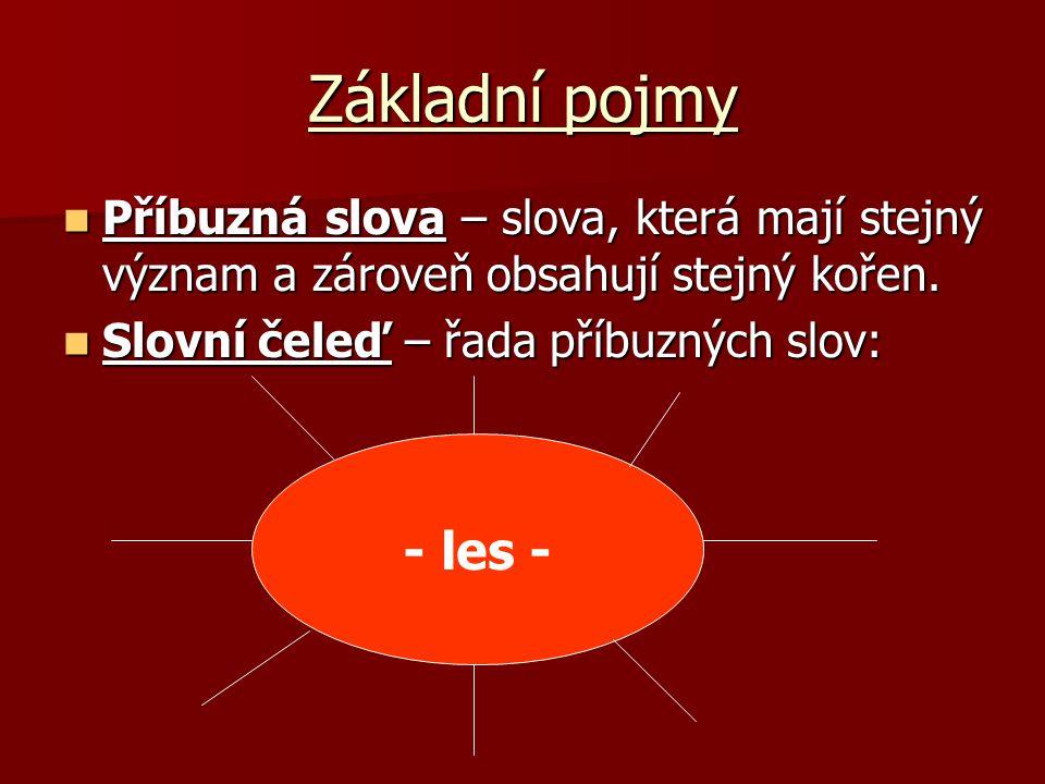 Základní pojmy KOŘEN – (radix) – slovní základ, část slova společná slovům příbuzným.