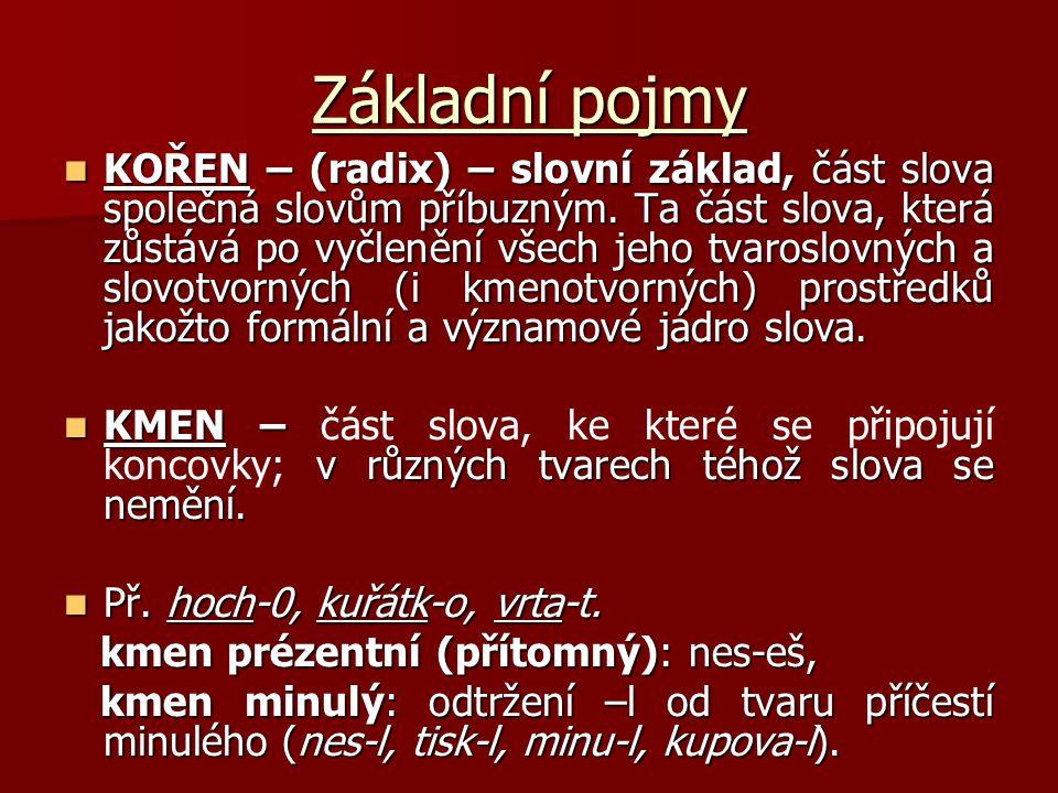Základní pojmy KOŘEN – (radix) – slovní základ, část slova společná slovům příbuzným. Ta část slova, která zůstává po vyčlenění všech jeho tvaroslovný