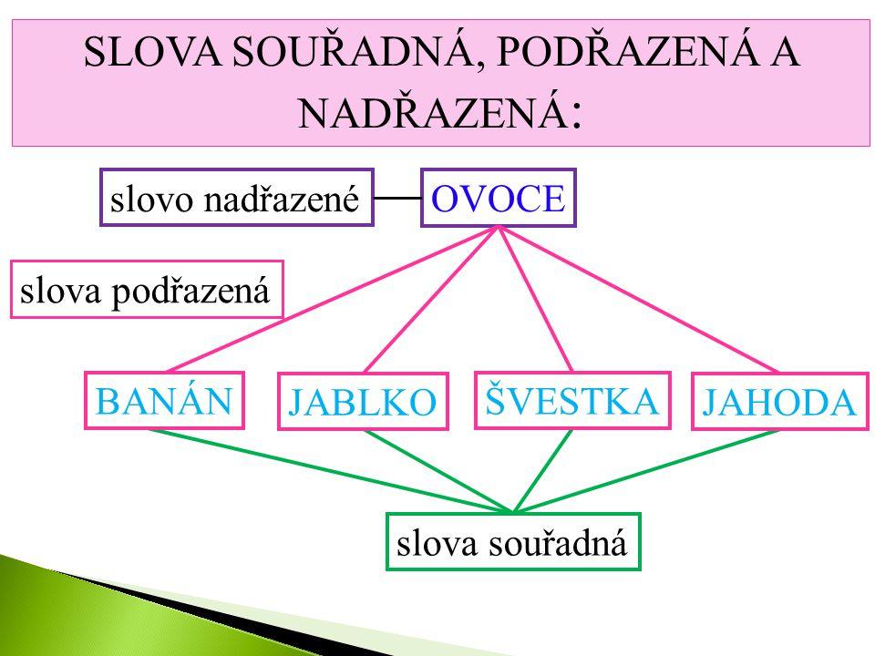 SLOVA 1. Souřadná, podřazená a nadřazená 2. Stejného významu – souznačná (synonyma) 3. Opačného významu – protikladná (antonyma) 4. Mnohovýznamová - m