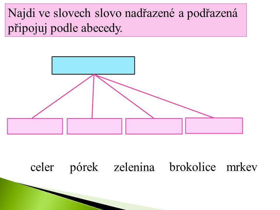 Najdi ve slovech slovo nadřazené a podřazená připojuj podle abecedy.