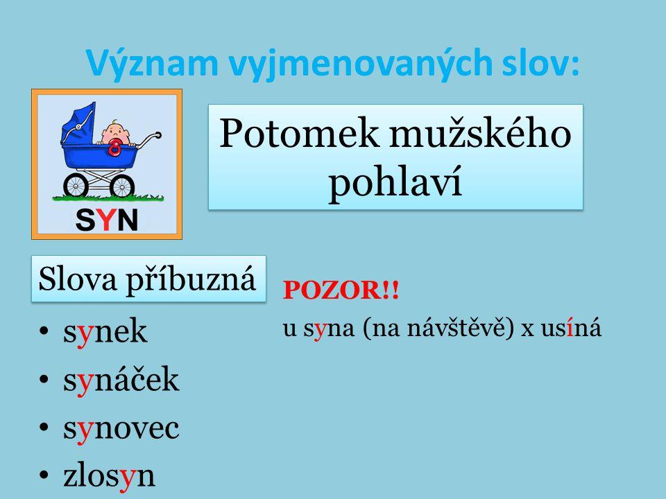Význam vyjmenovaných slov: synek synáček synovec zlosyn POZOR!.