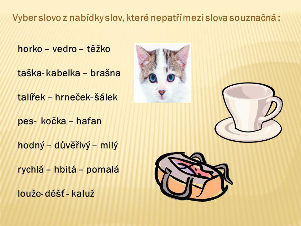 Vyber slovo z nabídky slov, které nepatří mezi slova souznačná : horko – vedro – těžko taška- kabelka – brašna talířek – hrneček- šálek pes- kočka – h