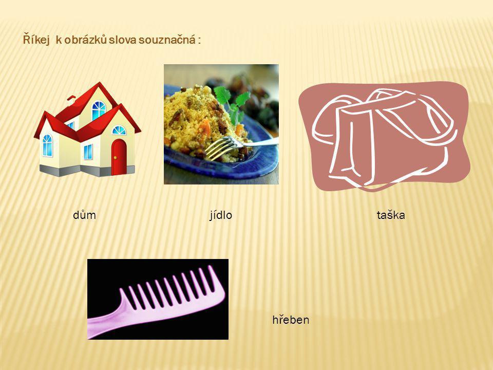 Říkej k obrázků slova souznačná : dům jídlo taška hřeben