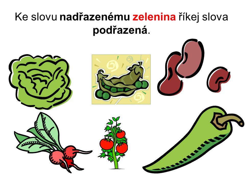 Řešení Slova podřazená: salát, hrách, fazole, ředkvičky, rajčata, paprika.